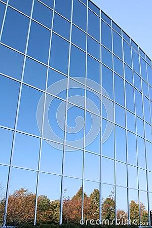 Free Modern Office Building Windows Royalty Free Stock Photo - 3546215