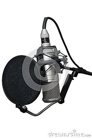 Modern professional microphone