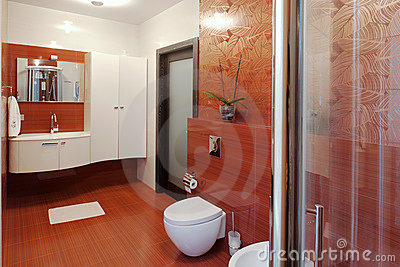 Modern shower cabin and bidet