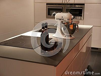 Modern style trendy design white kitchen