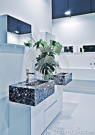 Modern toilette room