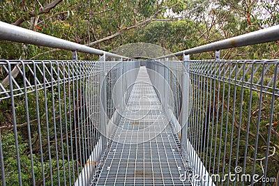 Tree top gangway