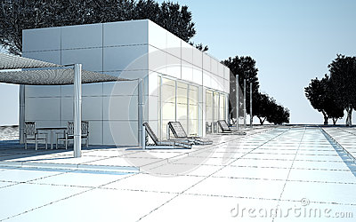 Modern villa with water pool wire construction