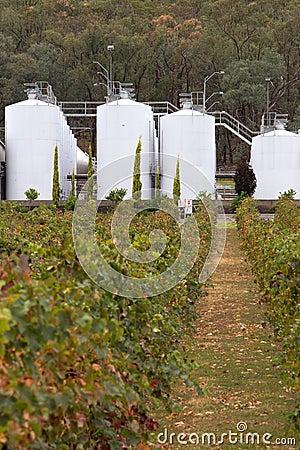 Modern winery.