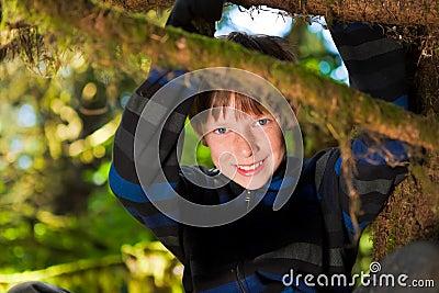 Młody chłopiec obsiadanie w drzewa ono uśmiecha się