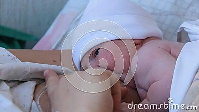 Moeder Holding Pasgeborene in Embrace en borstvoeding Haar baby, close-up View of Baby Head, Tenderness and Care of Motherhood stock video
