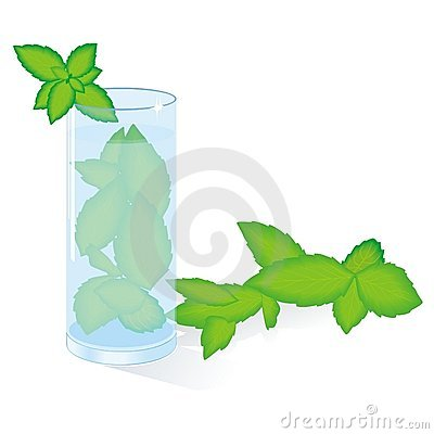 Mohito cocktail with mint