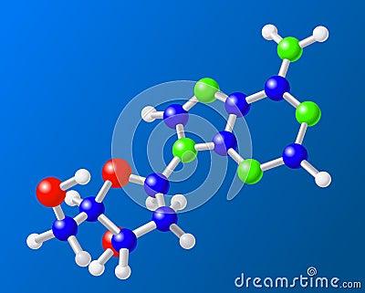 Molecule of adenine