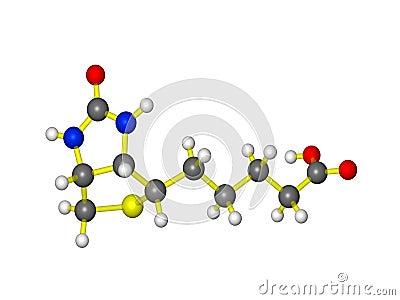 A molecule of vitamin b7