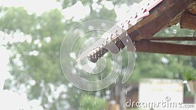 Molhe a gota, chuva que cai do telhado, chovendo o fundo vídeos de arquivo
