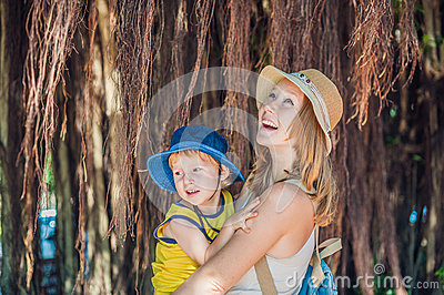 Mom and son on Vietnam travelers are on the background Beautiful tree with aerial roots Stock Photo