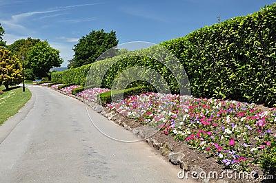 Mona Vale - Flower Beds, Christchurch, New Zealand