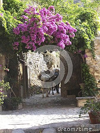 Free Monemvasia, Greece Royalty Free Stock Photos - 1237828