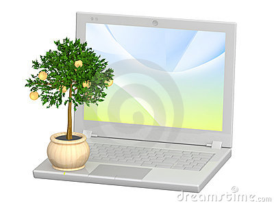 Monetary tree and laptop