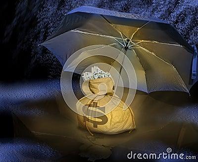 Money bag under umbrella