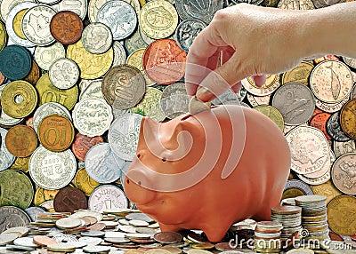 Money coins and piggy bank