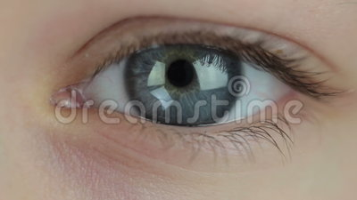 Only money in the eyes. The human eye close-up. Glowing signs of the currencies (dollar, euro, pound, yen) appear in the pupil of eye