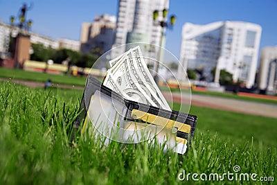 Money in grass