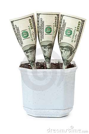 Money grows in a flowerpot