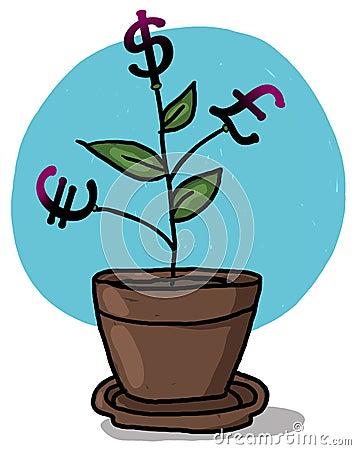 Money plant in a pot illustration