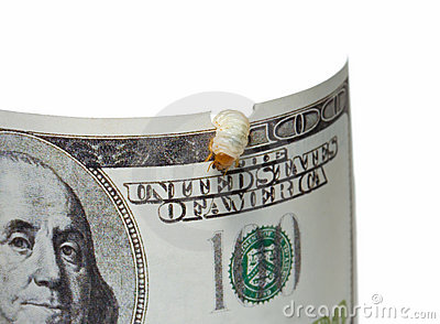 Money pest - disperse funds concept
