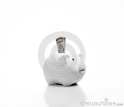 Money in piggy bank