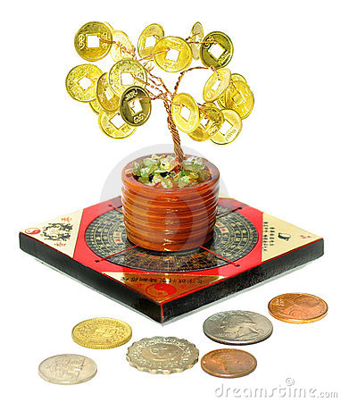 Free Money Tree Royalty Free Stock Photography - 19095007