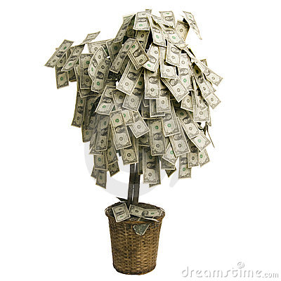 Free Money Tree Royalty Free Stock Photo - 2498645
