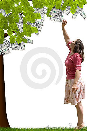 Free Money Tree Stock Photo - 2684500