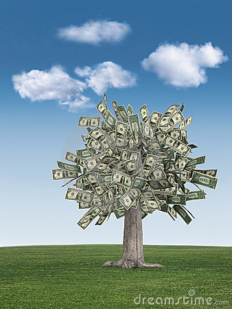 Free Money Tree & Blue Sky Royalty Free Stock Photography - 2319577