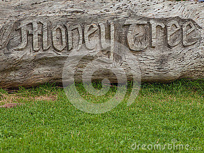 Money tree carving