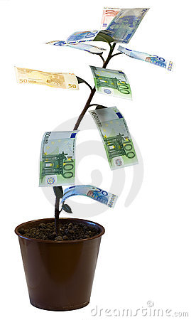Free Money Tree (Euro) Royalty Free Stock Photography - 3211587