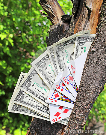 Money tree and playing cards