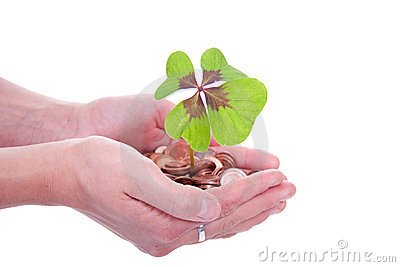 Moneytree grows in hands