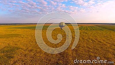 Mongolfiera che vola in basso sopra il campo giallastro contro il cielo blu, vista aerea archivi video