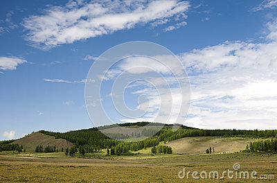 Mongolian Hills