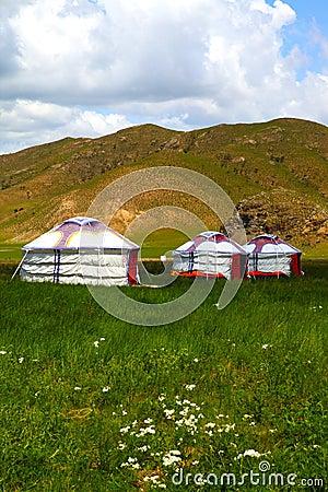 Mongolian home