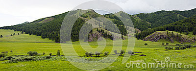 Mongolian Lanscape with Small Creek