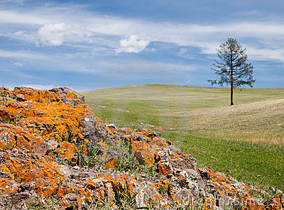 Mongolian steppe with colorful rocks Stock Photo