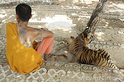 Monk and the Tiger Editorial Stock Photo