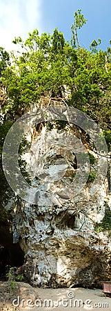 Free Monkey Cave Rock Vertical Panorama Stock Photos - 8412303