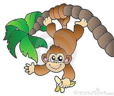 Monkey hanging on palm tree