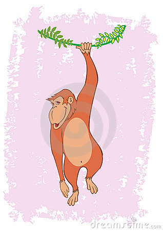 Monkey Hanging On Tree Vine Illustration