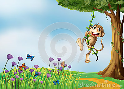 A monkey hanging on a vine plant