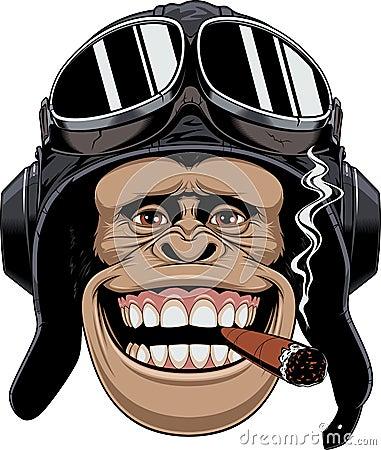 Free Monkey In Helmet Pilot Stock Images - 95860614
