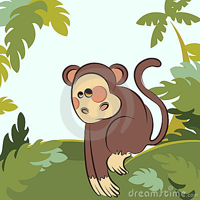 Monkey in the jungle