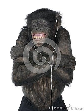 Monkey listening music