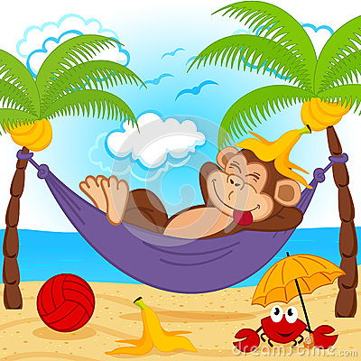 Free Monkey On Hammock Stock Photo - 40903680