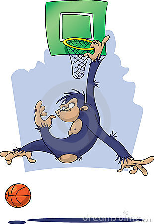 Monkey playing Basketball