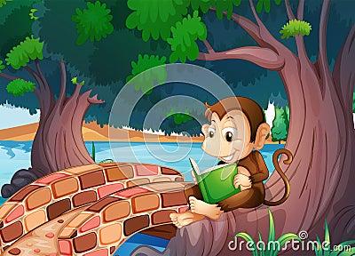 A monkey reading a book under the big tree near the bridge